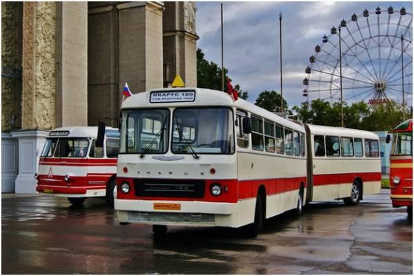 Автобусы! История автобусов Москвы! На фотографии автобус Икарус-180.